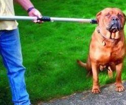 Crosă pentru prins câini de talie mare Heavy Duty
